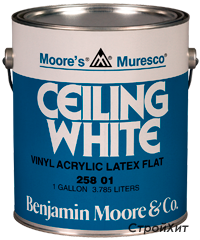 258. Muresco Ceiling White